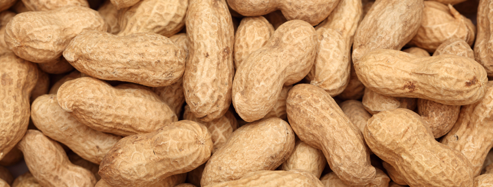 """GROUNDNUT"""